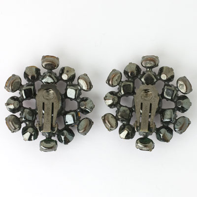 Back view of ear clips