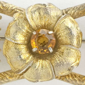 Close-up view of brooch center