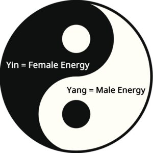 Definition of yin and yang